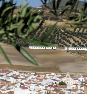 Cerrajeros Alcalá del Valle